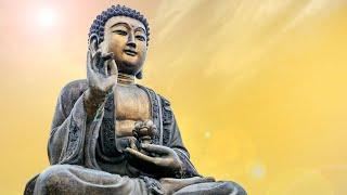 Hang Drum + Tabla Yoga Music || Positive Energy Music for Meditation