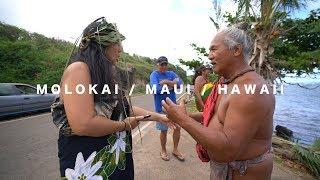 Download MOLOKAI / MAUI / HAWAII / FOOD / KA HULA PIKO / DOLPHINS Video