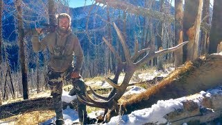 Download AMAZING Idaho Elk hunt - Limitless 39 Video