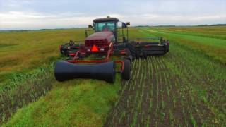 Download Harvest 2016 - Dairy Farming in Canada Video