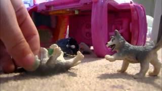 Download Schleich Wolf movie part 1 ( Pups gone mad) Video