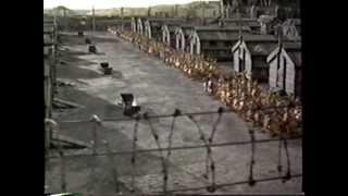Download Chicken Run (2000) Trailer (VHS Capture) Video