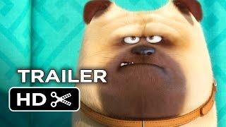 Download The Secret Life of Pets Official Teaser Trailer #1 (2016) - Jenny Slate, Kevin Hart Movie HD Video
