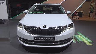 Download Škoda Octavia Combi CNG 1.5 TSI 130hp DSG7 (2019) Exterior and Interior Video
