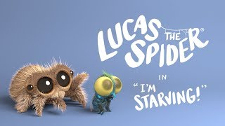 Download Lucas The Spider - I'm Starving Video