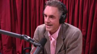 Download Jordan Peterson on Women's Studies (from Joe Rogan Experience #877) Video