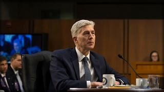 Download WATCH: GORSUCH SLIPS AT HEARING, SAYS 1 WORD THAT HAS ENTIRE ROOM ERUPTING WITH LAUGHTER Video
