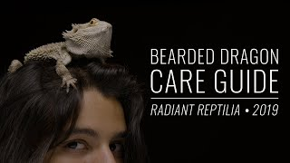 Download Bearded Dragon Complete Care Guide | Radiant Reptilia 2019 Video