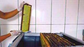 Download Mesa Desoperculadora Para Iniciantes na Apicultura Video