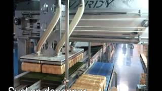 Download Industrial Bakery Divardy line Video