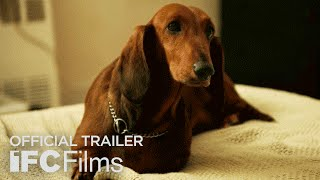 Download Wiener-Dog - Official Trailer I HD I IFC Films Video
