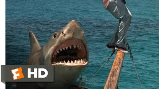 Download Jaws: The Revenge (7/8) Movie CLIP - The Beast Comes Back (1987) HD Video