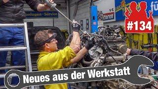 Download Holgers Kampf gegen die Glühkerze im Ford Transit!  Audi TT mit Lichtproblemen Video