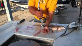 Download Best Way To Fillet White Bass Video