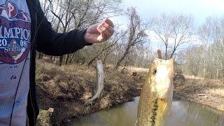 Download Winter Micro-Fishing w/ LIVE BAIT: Shiners, Waxworms, Nightcrawlers (Somerset, NJ) Video