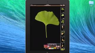 Download Tutorial for LeafSnap Video
