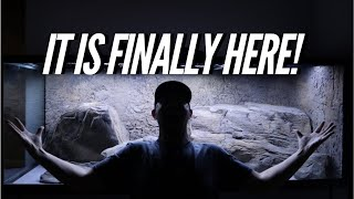 Download It is finally home! The AQUARIUM Looks huge and the rocks even BIGGER! | Jay Wilson Video