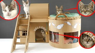 Download 🐈🏠How to make Amazing Kitten Cat Pet House from Cardboard Video