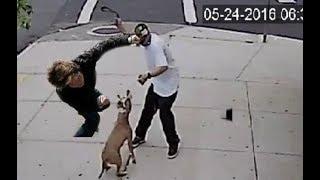 Download Dog lover knocks out a dog abuser!!! Video