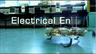 Download Technion Robots - Snake, Worm, Wall Crawling, Algorithms, Multi Agent Video