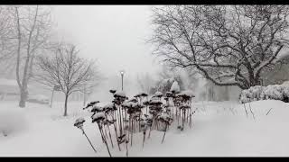 Download Time-Lapse: 28 inches of snow in 4 HOURS!!! (with aerials) Video