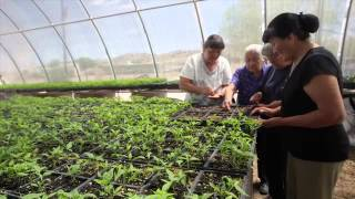 Download First Nations' Work in Native Food Systems Video
