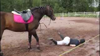 Download Tippumisia 2 » Horse falls 2 Video