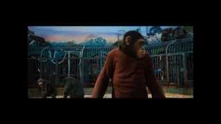 Download RISE OF THE PLANET OF THE APES (2011): Ceaser Confronts Rocket Video