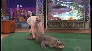 Download Jay Leno almost bitten by Alligator - Steve Irwin 2002 Video