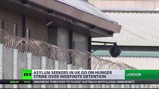 Download Massive hunger strike in UK immigration detention center, inmates live-tweet Video