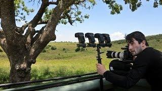 Download wildlife strobist in Masai Mara Kenya Video