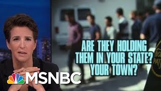 Download Americans Finding Ways To Work Against Donald Trump Immigration Policy | Rachel Maddow | MSNBC Video