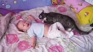 Download Baby lays crying on the bed and the family cat leaps forward – keep an eye on what happens next Video