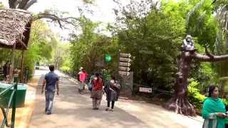 Download A SHORT VISIT TO MYSORE ZOO HD 23 Apr 14 Video