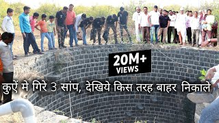 Download कुऐं मे गिरे 3 साप, फिर आप ही देखिये आगे क्या हुआ, Rescue cobra snake from Ahmednagar, maharashtra Video