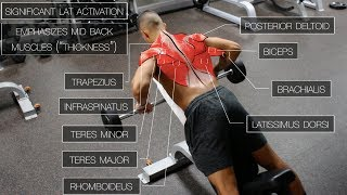 Download The Best Science-Based Back Workout (TARGET EVERY MUSCLE!) Video