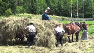 Download Bauernarbeit und Mundart Video