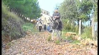 Download SERENO VARIABILE a SAN GIOVANNI A PIRO.mpg Video