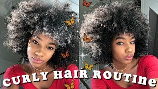 Download NATURAL CURLY HAIR *WASH DAY* ROUTINE 2018 Video