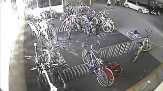 Download Professional Bike Thief Video