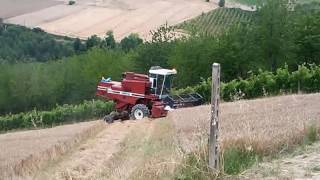 Download FiatAgri-Laverda 3300 AL TREBBIATURA 2016 Video