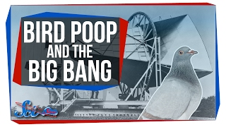 Download How (a Lack of) Bird Poop Proved the Big Bang Video