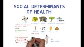 Download Social Determinants of Health - an introduction Video