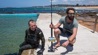 Download Freediver vs Fisherman Video