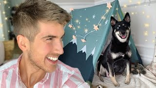 Download Preparing For My Pregnant Dog To Give Birth Video