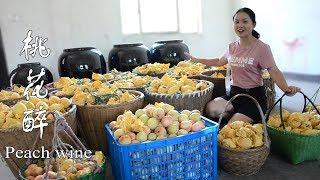 Download 農村姑娘用1500斤桃子,自釀桃花醉,神仙見了都流口水(完整版) Video