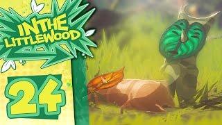 Download The Legend Of Zelda: Breath Of The Wild - Part 24 - Korok Trials Video