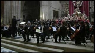 Download NOVENA SINFONÍA DE BEETHOVEN . Himno de la alegría Video