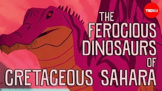 Download The ferocious predatory dinosaurs of Cretaceous Sahara - Nizar Ibrahim Video