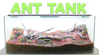 Download How to Build an Ant Farm | Natural Formicarium Video